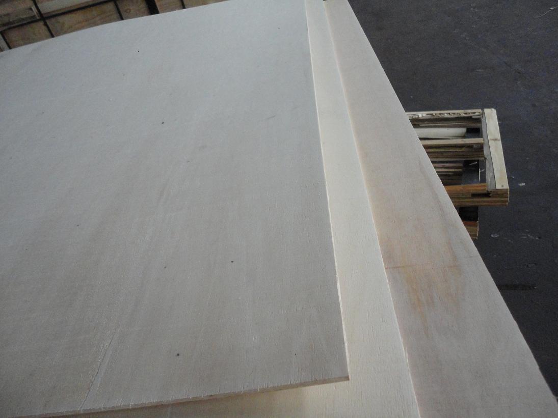 Poplar Plywood 02
