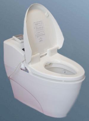 china bidet toilet bd 005 china computerized toilet. Black Bedroom Furniture Sets. Home Design Ideas