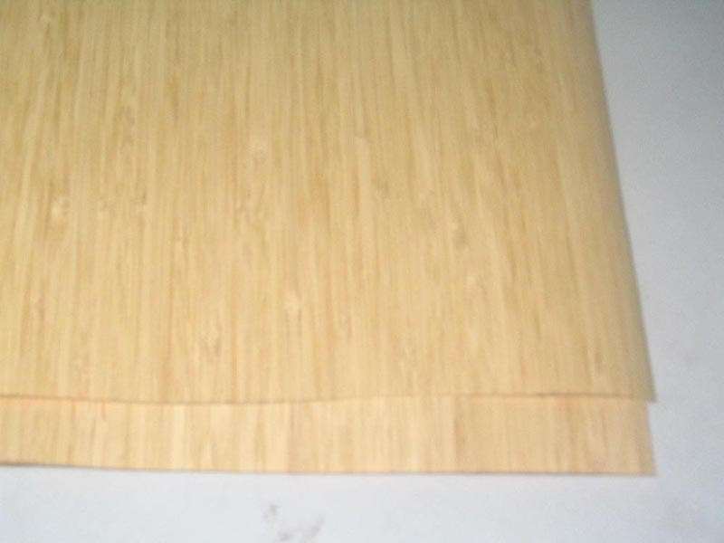 China bamboo veneer nv