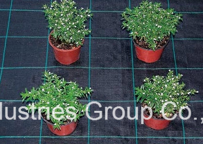 PP Woven Weed Control Fabric Weed Mat