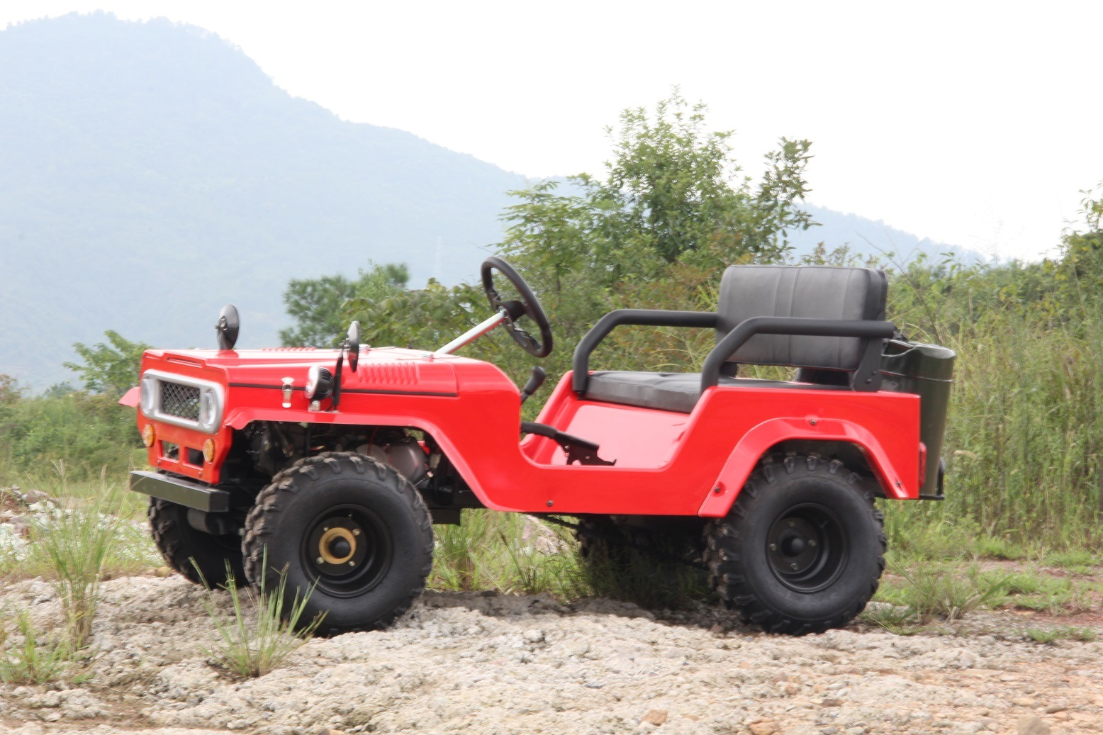 Red Color Land Cruiser 110cc 125cc 150cc 200cc ATV