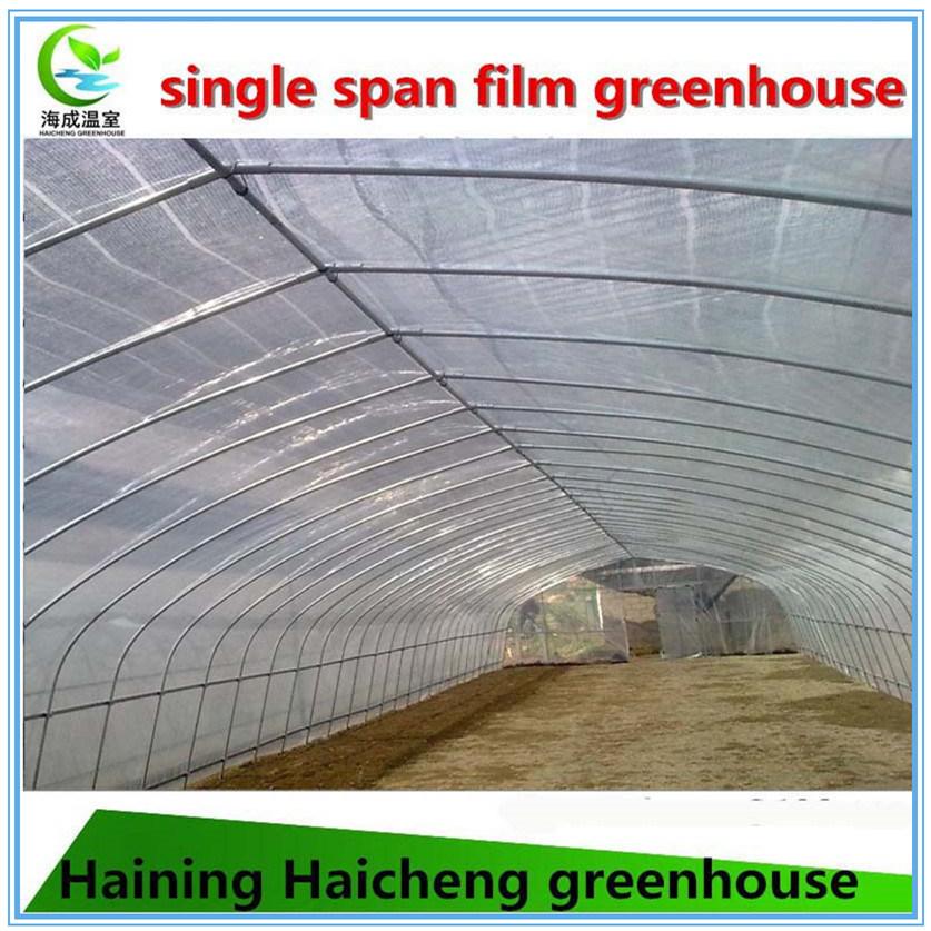 Strong Plastic Film Greenhouse for Mushroom
