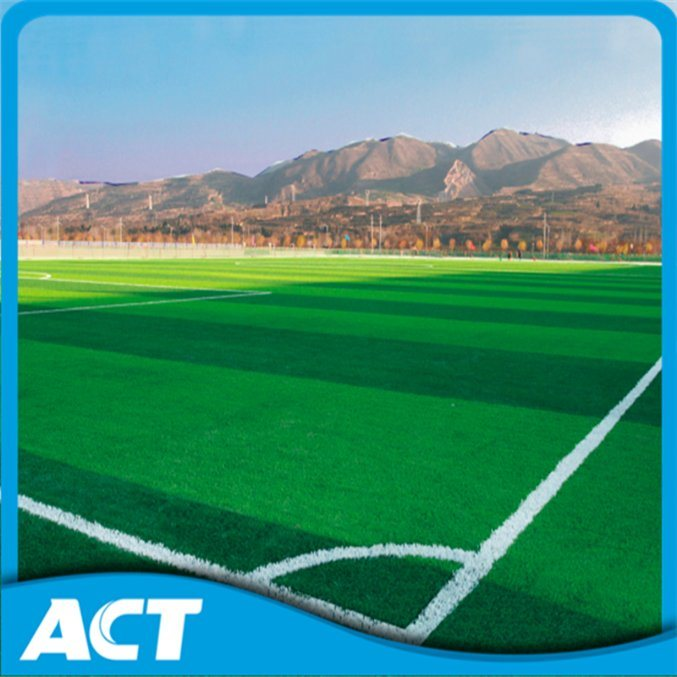First Artificial Grass Factory for 15 Years Durable Two Stem Artificial Football Grass Soccer Grass Sports Field SMD50