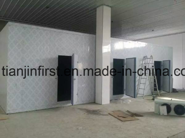 Fruit and Vegetable Cold Room Cold Storage for Seafood Fish