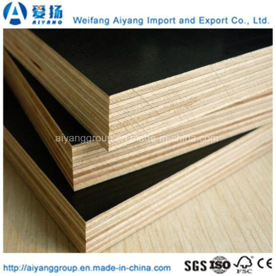 Custom Size Film Faced Plywood for Shuttering Concrete
