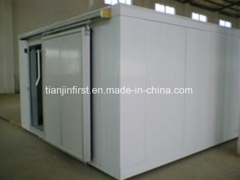 Hot New Professional Cold Storage/Cold Room