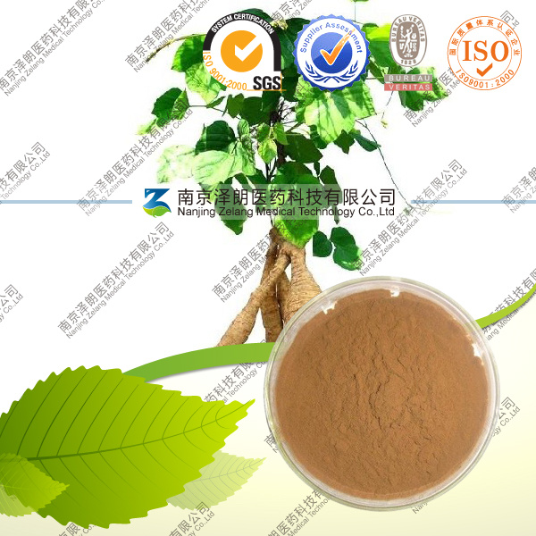 High Quality Health Care Product Pueraria Extract Puerarin