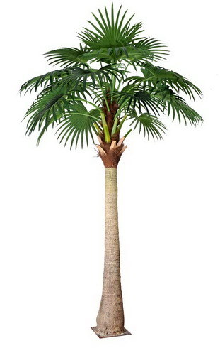 Artificial Plants and Flowers of Fan Palm 3.3m