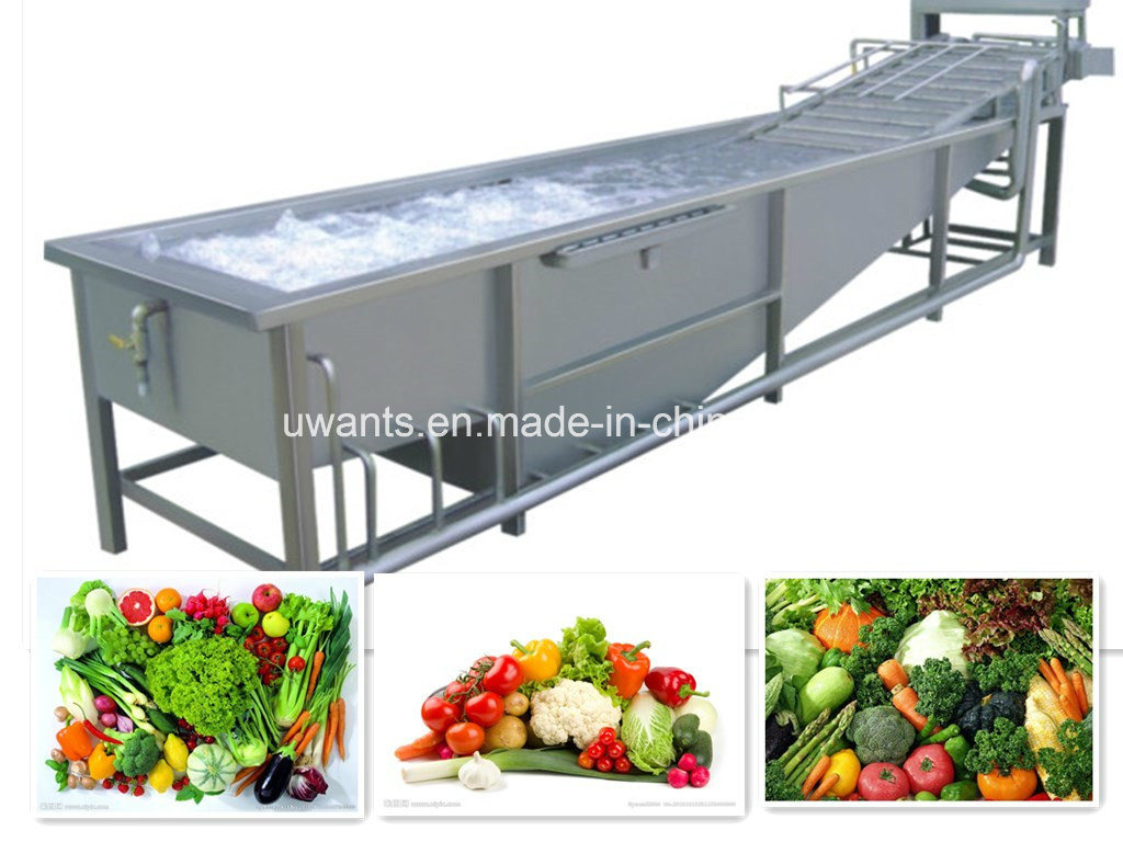 Hot Sale! ! ! Popular Air Bubble Vegetable&Fruit Washer Machine