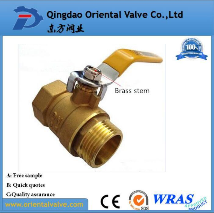 Female Male Valve Brass Price Per Kg with NPT Thread (Dn25 Pn20)