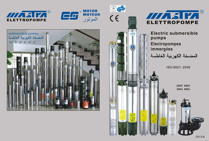 "Stainless Steel Cast Iron Submersible Water Pump (3"" 4"" 6"" 8"")"