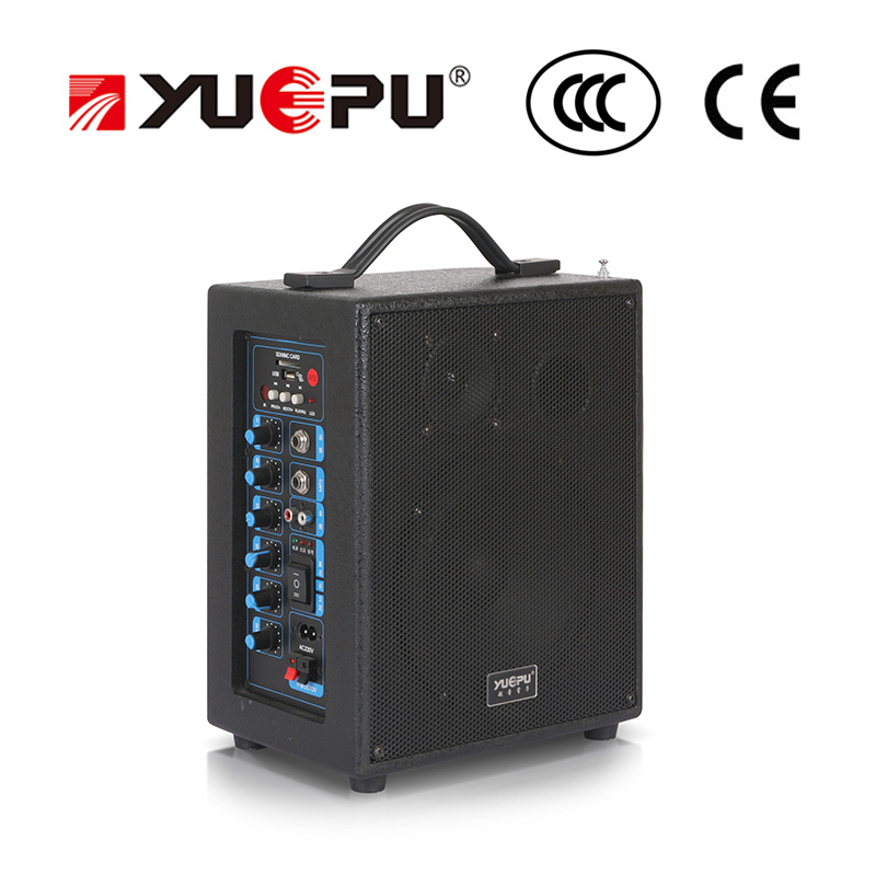Professional PA Speaker Dual Wireless Channel