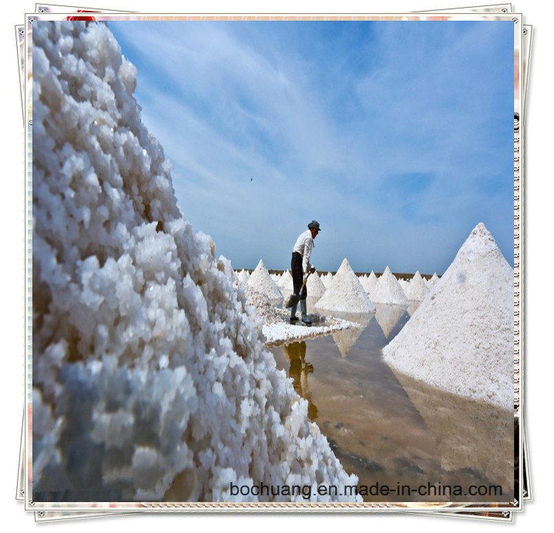 Manufacturer Offer High Quality Industrial Salt/Sodium Chloride