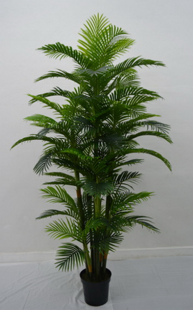 High Quality Artificial Plants of Palm Tree F03302159