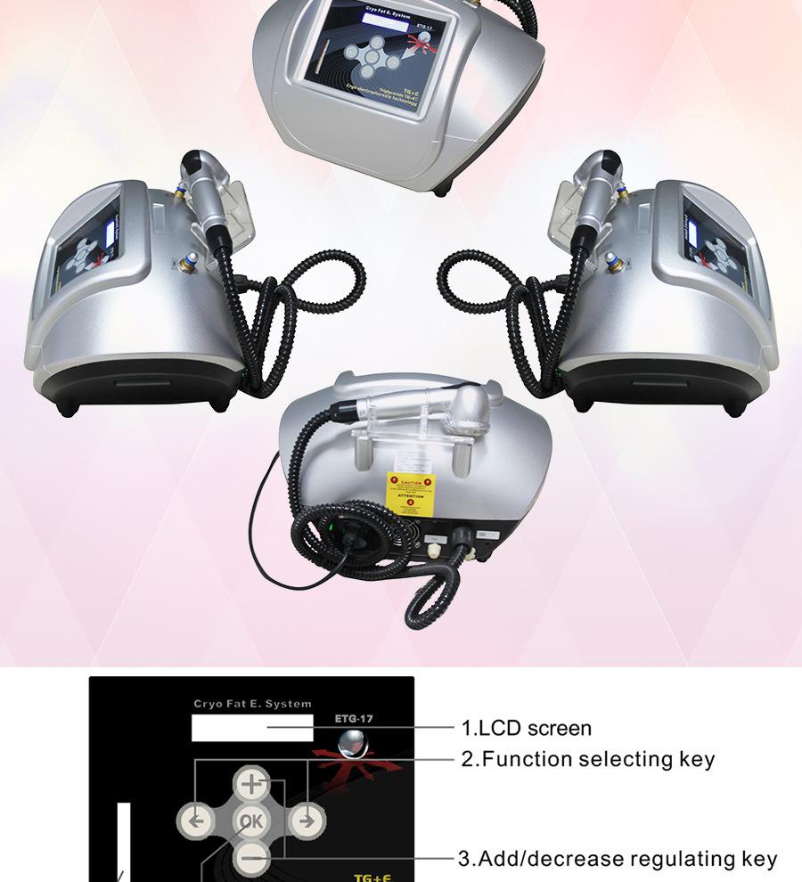 Portable Freezed Fat Beauty Equipment (ETG17)
