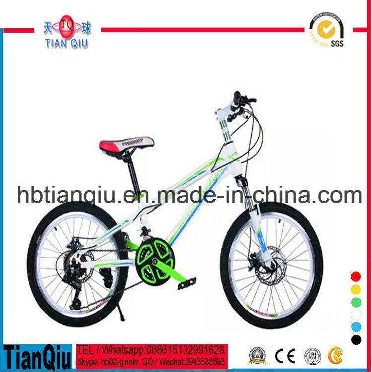 Hot Sale Kids Mountain Bike Children Mountain Bike Made in China for Boy