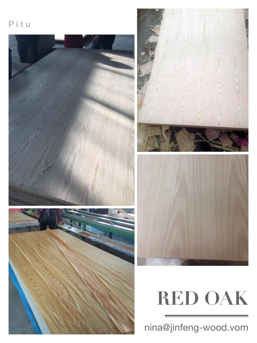 MID East Market Red Oak Veneer Board Natural MDF Plywwod Blockbaord