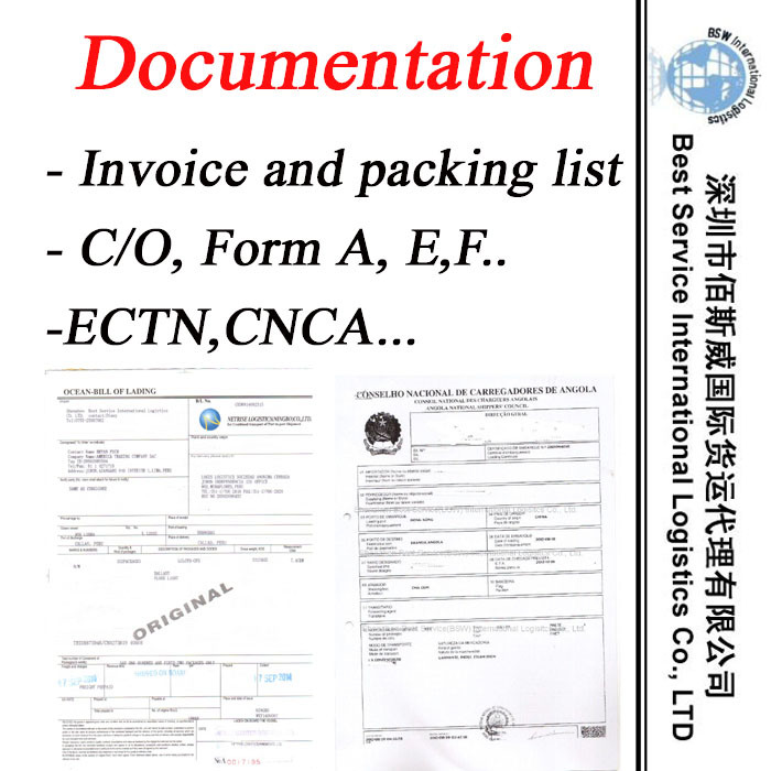 Freight Forwarder for Documentation Service -Logistics Service