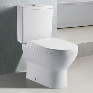South America Market Two-Piece Ceramic Toilet (2012)