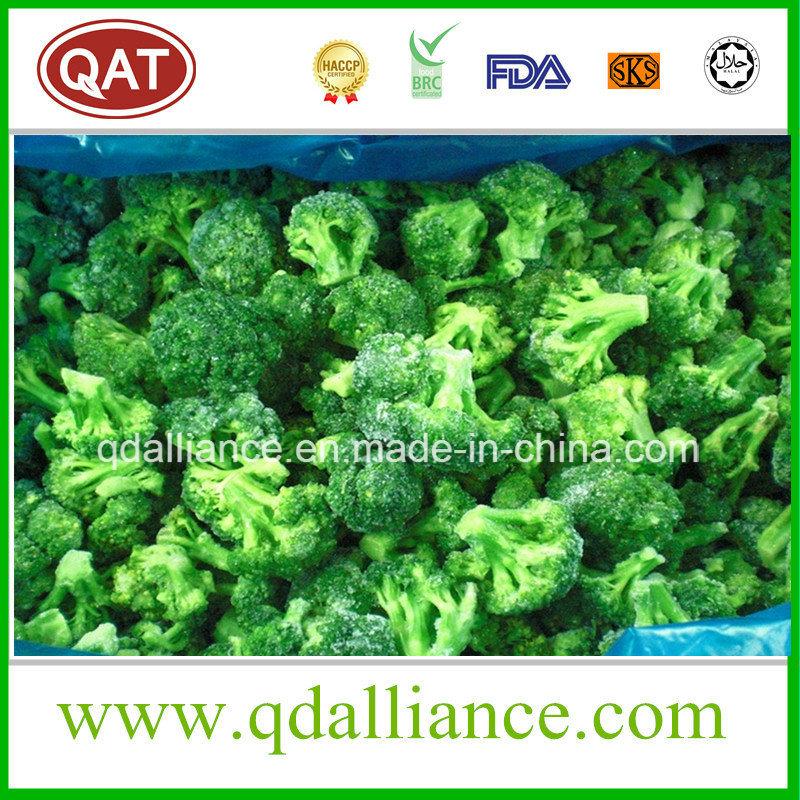 IQF Frozen Broccoli
