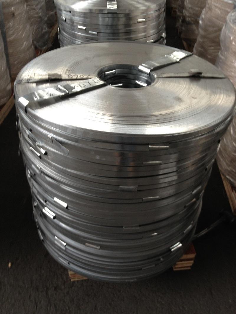 Galvanized Steel/Galvanized Steel Strip/Galvanized Steel in Coils/Steel Sheet