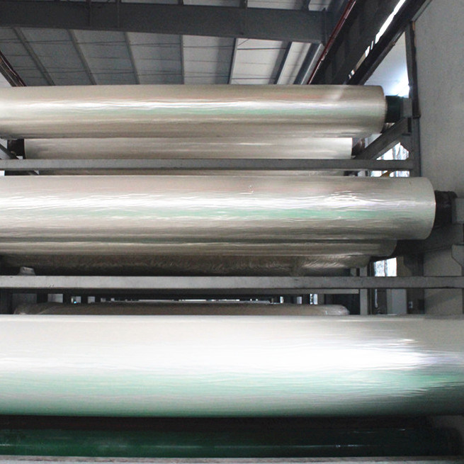 CPP Film / Cast Polypropylene Film (DW)