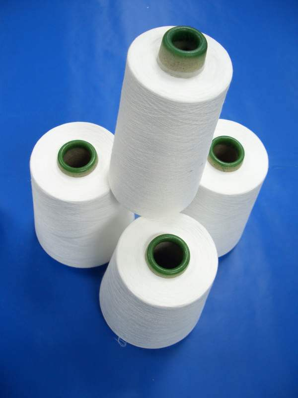 Spun Polyester Yarn for Sewing Thread (30s/3)