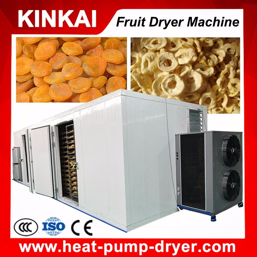 Professional Manufacturer of Fruit Dryer Machine