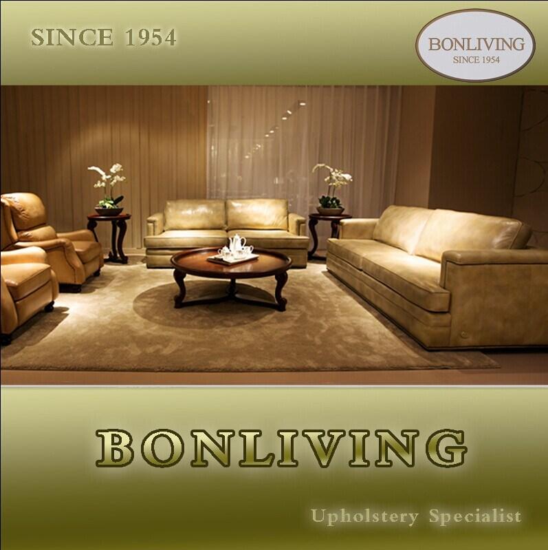 Living Room Genuine Leather Sofa (A10)
