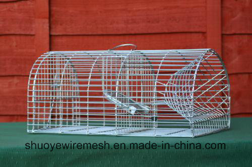 Foldaway/Chipmunk/Groundhog Trap Cage
