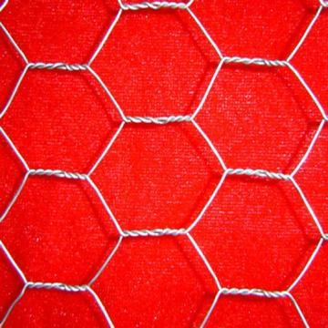 Chicken Wire / Hexagonal Wire Mesh