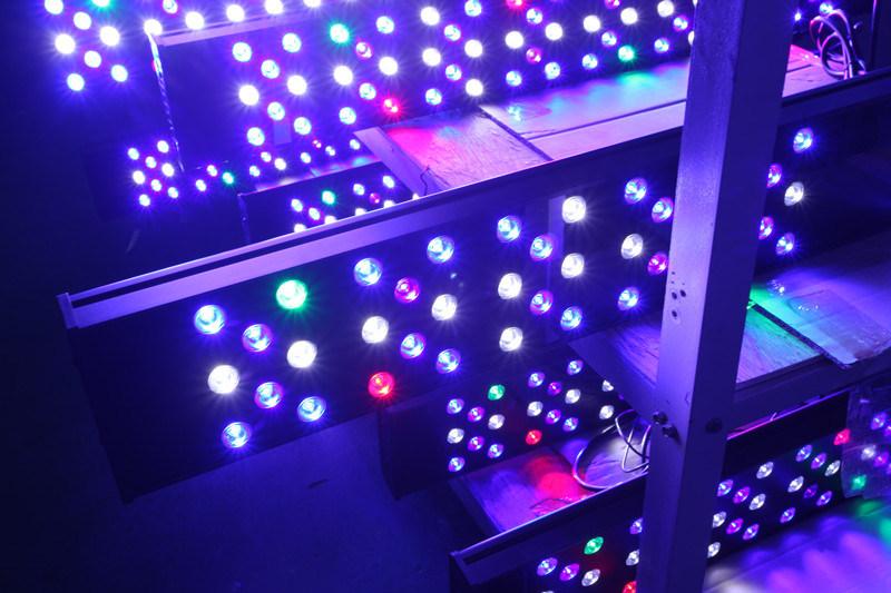 "48"" Intelligent Programmable Marine LED Aquarium Lighting"