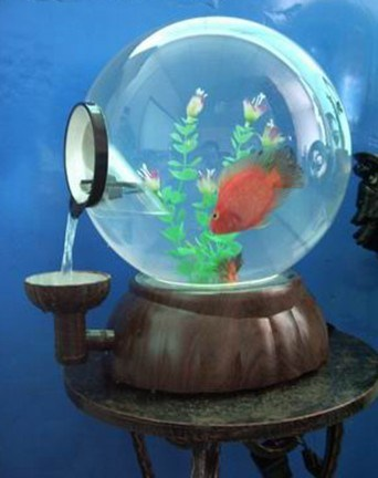 China mini aquarium pearl fish bowl t 3011 china for Mini fish bowls