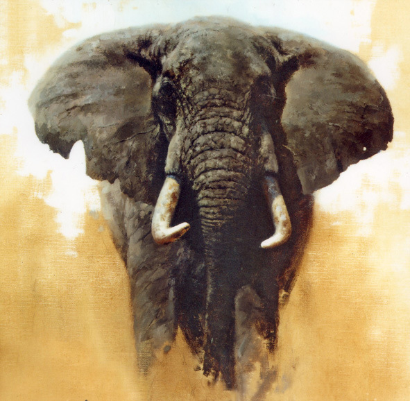 Oil painting art animal oil painting for Animal oil paintings