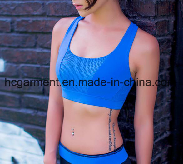 Quickly Dry Workout Bra for Women/Lady, Running Clothing, Yoga Wear