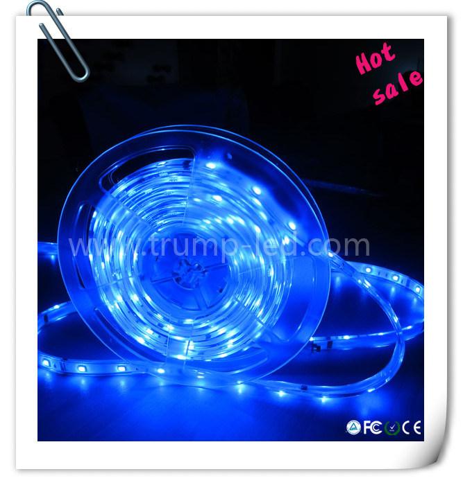 LED Strip Outdoor LED Light ...