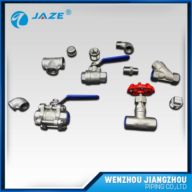 Wenzhou Vendor Flanges Pipe Fittings