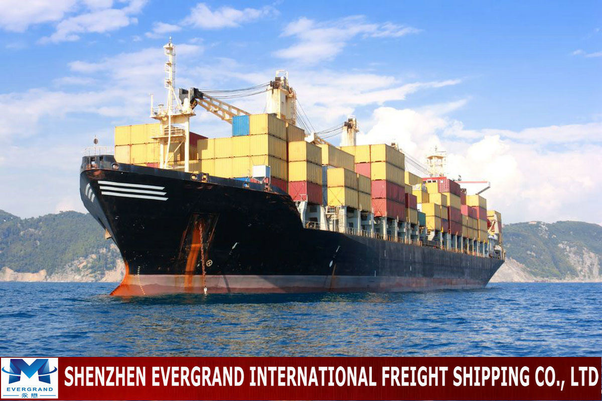 Reliable China Shipping Consolidation to New Zealand