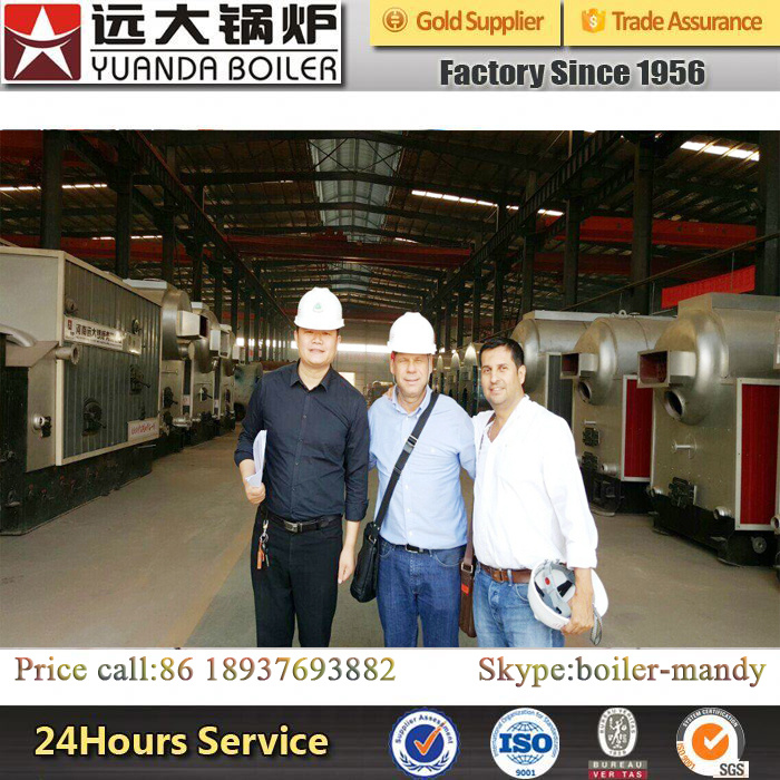 1ton/2ton/4ton/6ton Biomass/Coal Fired Steam Boiler for Rice Mill Factory