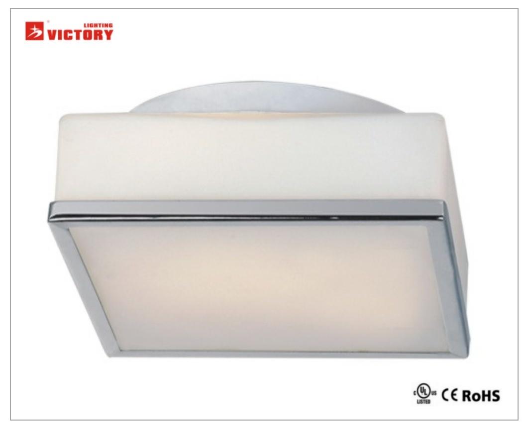LED Modern Interior Popular Lighting Surface Mount Ceiling Lamp