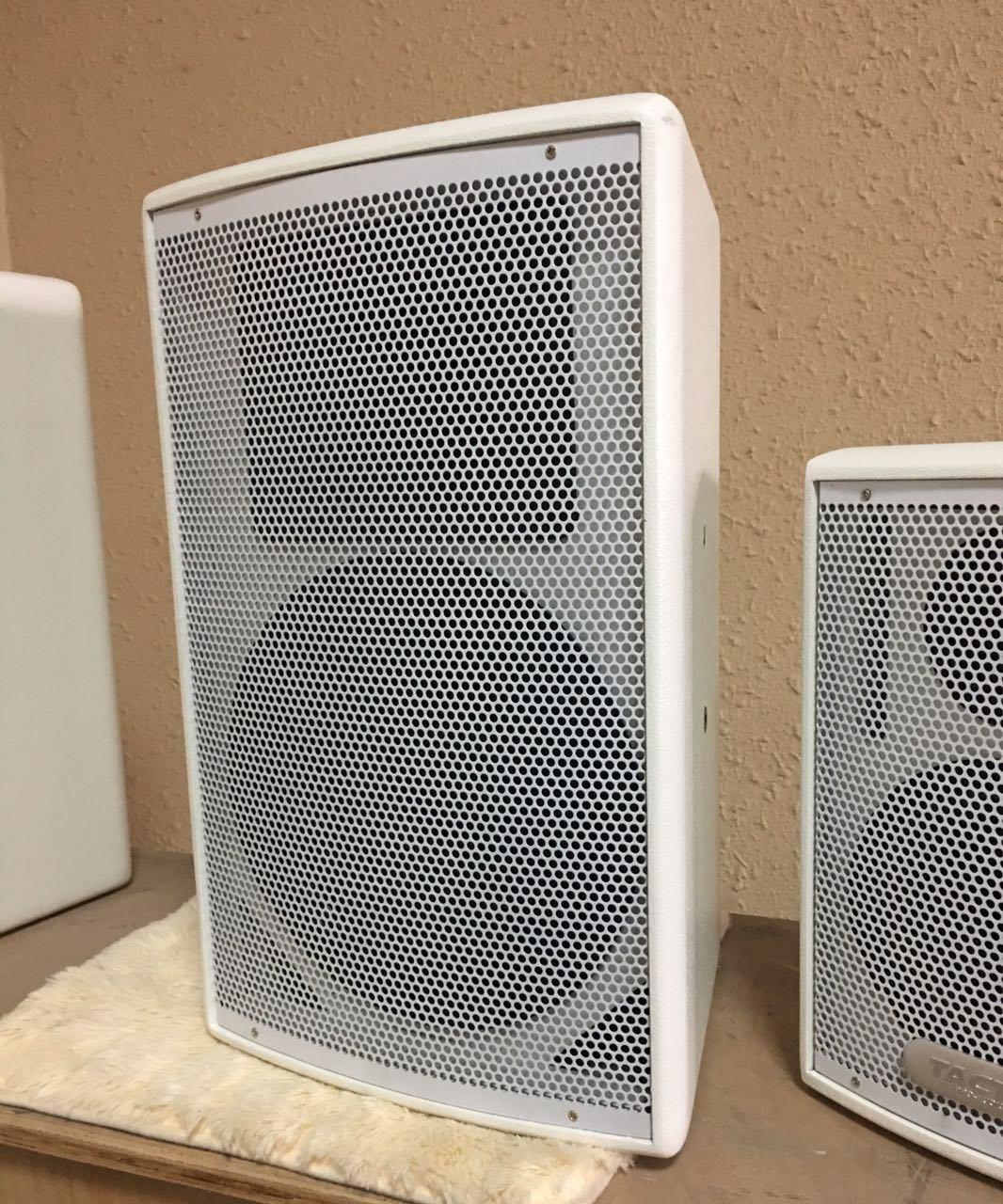 Single 10 Inch Professional Meeting Speaker Audio (M110)