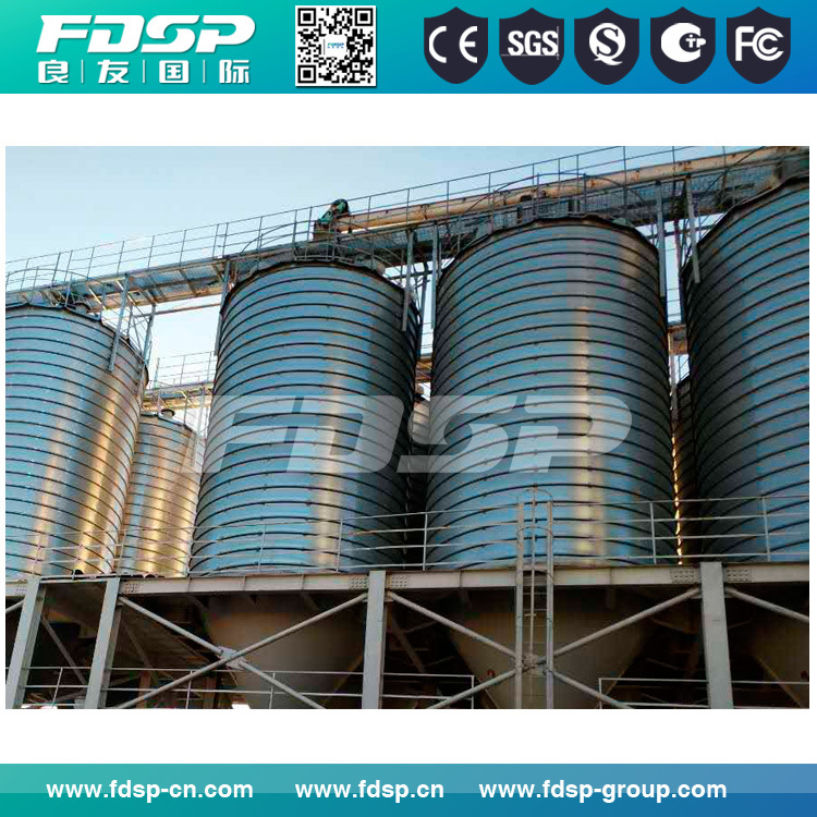 Galvanized 2000t Steel Silo for Corn Storage