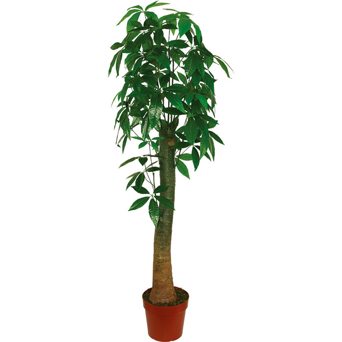 Artificial Plants of Fortune Tree