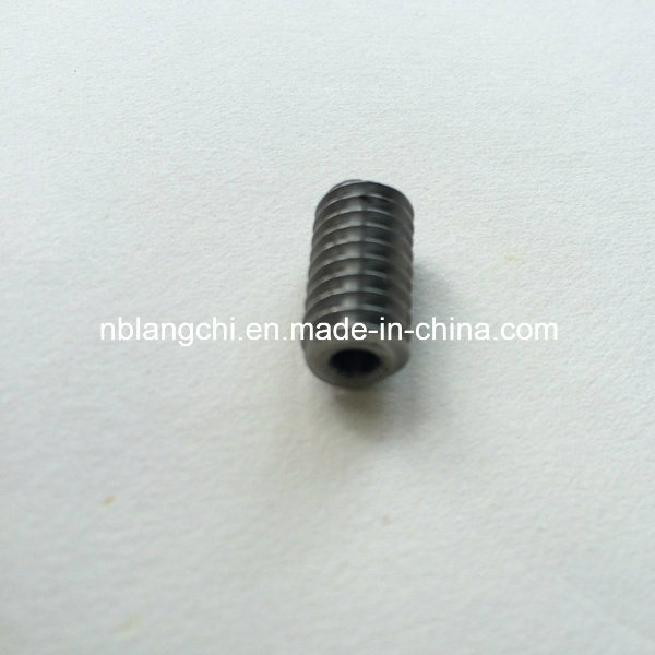 Transmission Customized Steel Worm Gear Endless Screw Worm