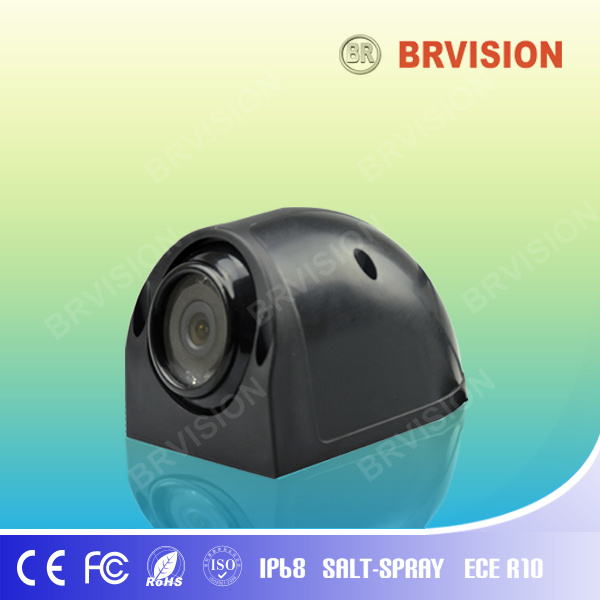 Security Car Monitor System for Side View (BR-RVC08)