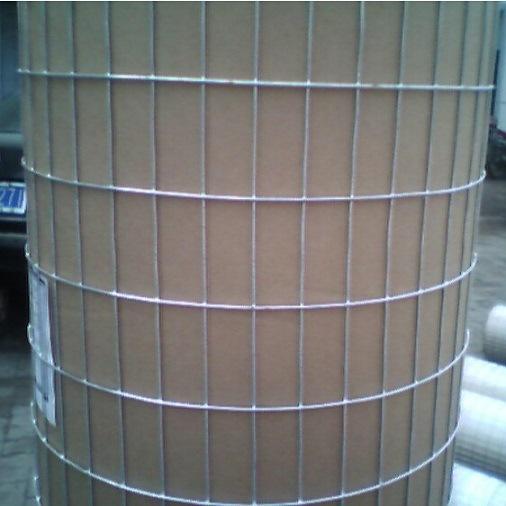 Carbon Steel Galvanized Welded Wire Mesh / Galvanized Welded Mesh (XM-04)