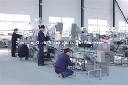 Mechanical Counting Bottling Line of Pharmaceutical Packing Machine