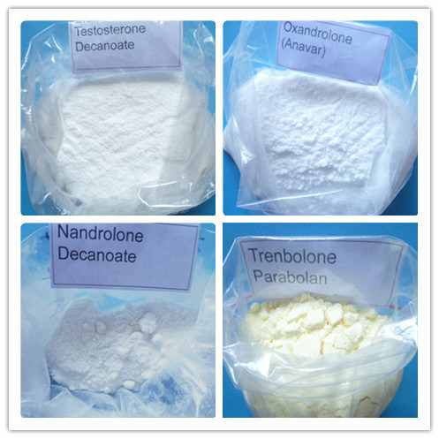 Steroid Raw Powder Testosterone Propionate