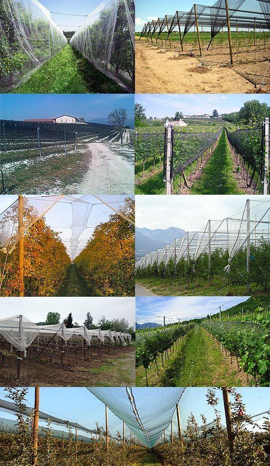 Italy Selvage Anti Hail Net / Black Anti Hail Net for Agriculture, Hail System Net Antigranizo Granizo, Tela Antigranizo