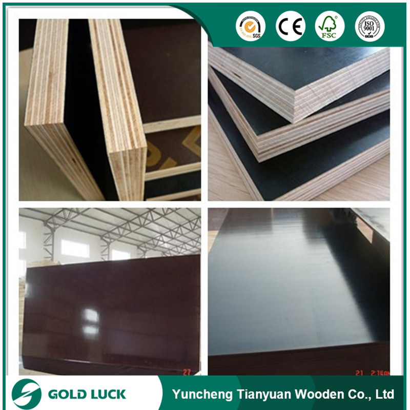 1220*2440mm China Film Faced Shuttering Phenolic Construction Plywood